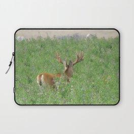 Montana Whitetail Buck Laptop Sleeve