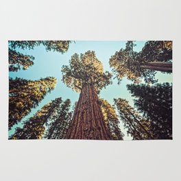 The Largest Tree in the World Rug