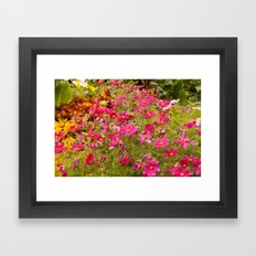 Royal Gardens Framed Art Print