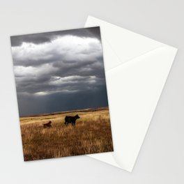 Life on the Plains - Cow Watches Over Playful Calf in Oklahoma Stationery Cards