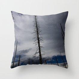 Burned Tree Against Sky Throw Pillow