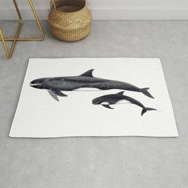 Pygmy killer whale Rug