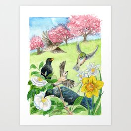 Spring in New Zealand Art Print