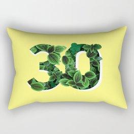 30 Rectangular Pillow