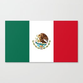 The Mexican national flag - Authentic high quality file Canvas Print