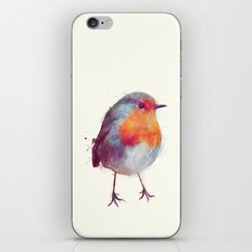 Winter Robin iPhone Skin