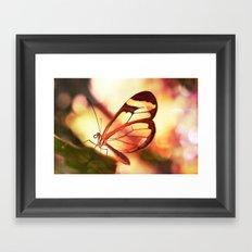 Butterfly 01 Framed Art Print