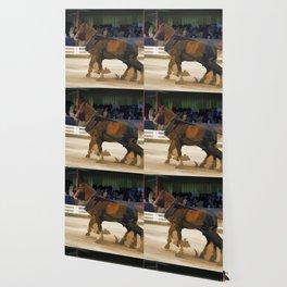 Pure Horsepower - Horse Pulling Event Wallpaper