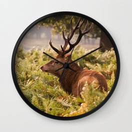 Red Deer Stag Wall Clock