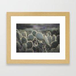 Sunset Cliffs Cactus Framed Art Print