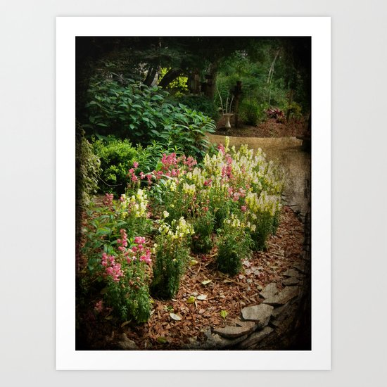 Along the Garden Path Art Print