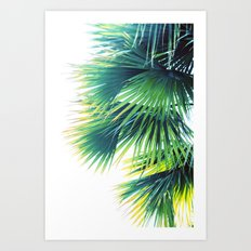 Bright Palm Art Print