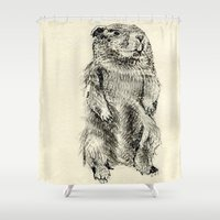 beaver Shower Curtains featuring Beaver by Amy Veried