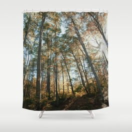 into the woods 08 Shower Curtain