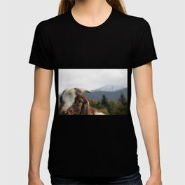 Look who's complaining, funny goat photo T-shirt