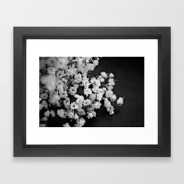 Baby's-breath black and white Framed Art Print