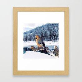 Winter Moments Framed Art Print