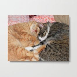Nap Buddies Metal Print