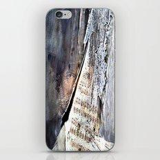 the greats of classical music ( Verdi) iPhone & iPod Skin