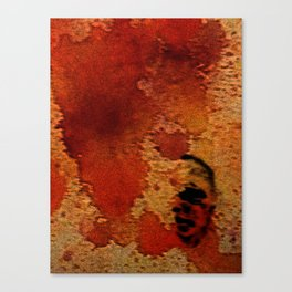 ST-art Self HDR Canvas Print