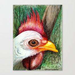Ricki the Chicken Canvas Print