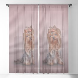 Drawing Yorkshire Terrier dog Sheer Curtain