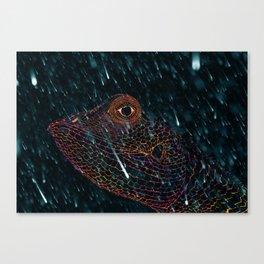 radiochameleon Canvas Print