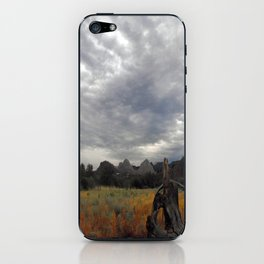 The big Picture iPhone Skin