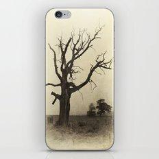 Ye Olde Tree iPhone & iPod Skin