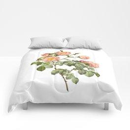Vintage Pink Roses [03] Comforters