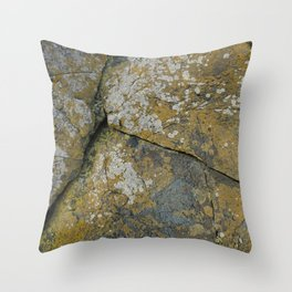 Ancient Rocks with Lichen Texture Throw Pillow