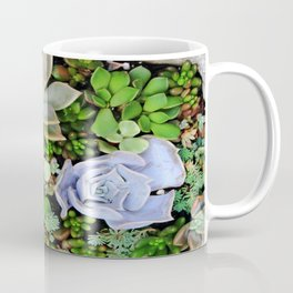 Collection of Succulents Coffee Mug
