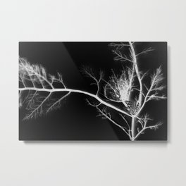 black kelp Metal Print