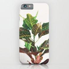 Croton iPhone 6s Slim Case