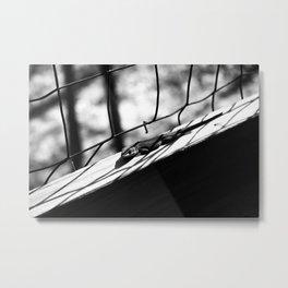 Shadowed Metal Print