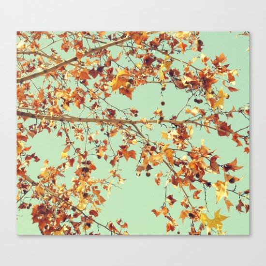 En los árboles Canvas Print