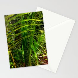 New Palm Frond Stationery Cards