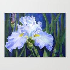Blue Ruffles Canvas Print