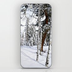 Colorado Scene iPhone & iPod Skin