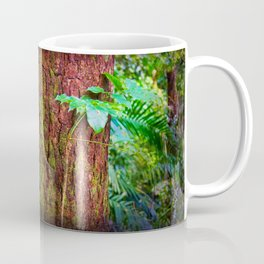 New and old rainforest growth Coffee Mug