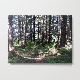 Alaskan Forest Metal Print