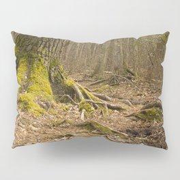 Mossy Woods - Ridge Hill Reserve Pillow Sham
