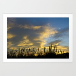 Camargue Sunrise  Art Print