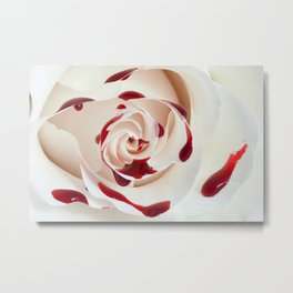 Bleeding Rose Macro Metal Print