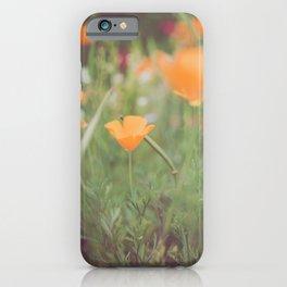 Golden Poppies II iPhone Case