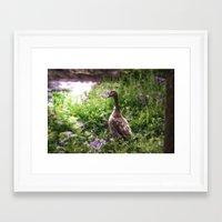 duck Framed Art Prints featuring Duck by Terri Ellis