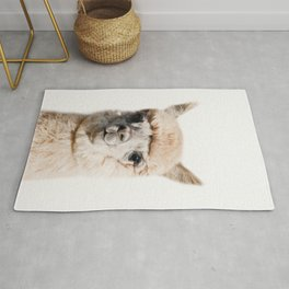 Baby Alpaca, Baby Animals Art Print By Synplus Rug