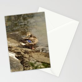 Summer Mallards Stationery Cards