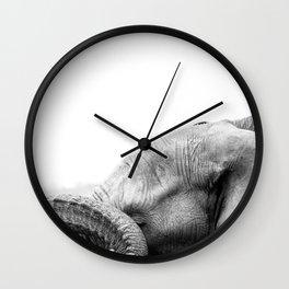 Bashful Beauty Wall Clock