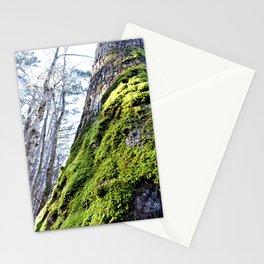Missouri Moss Stationery Cards